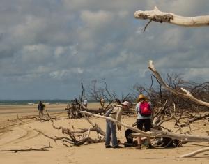 Marine debris clean up at Sandy Point